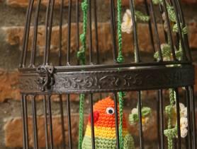 Agapornis con nido